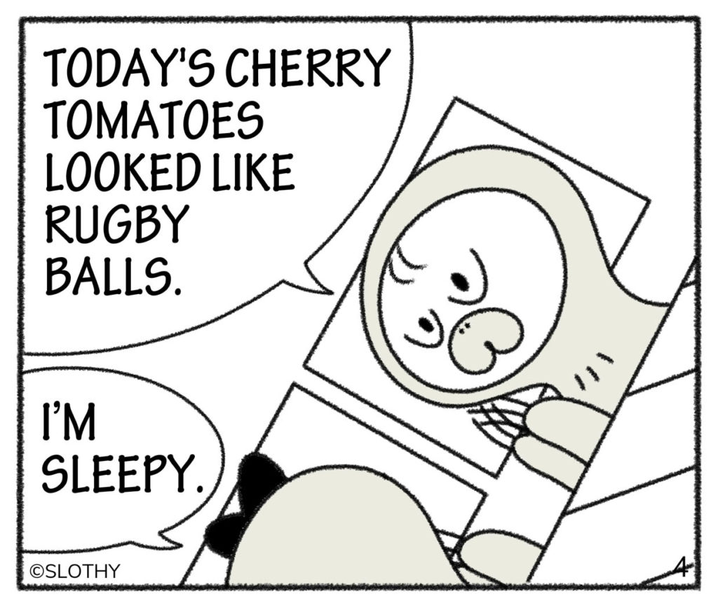 TODAY'S CHERRY TOMATOES LOOKED LIKE RUGBY BALLS.I'M SLEEPY.
